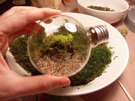 Simple ideas for adorable terrariums 18
