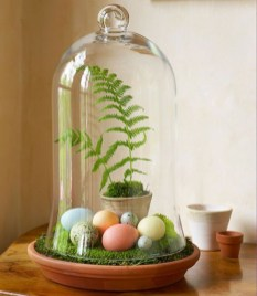 Simple ideas for adorable terrariums 24