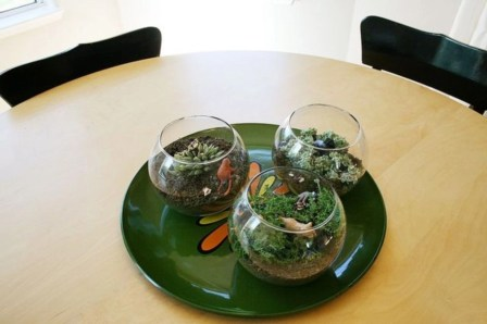 Simple ideas for adorable terrariums 27