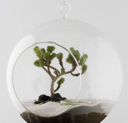 Simple ideas for adorable terrariums 28