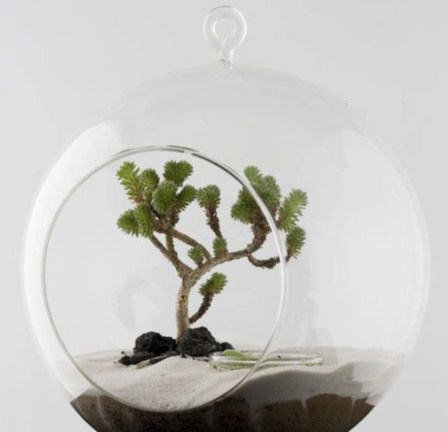Simple ideas for adorable terrariums 28