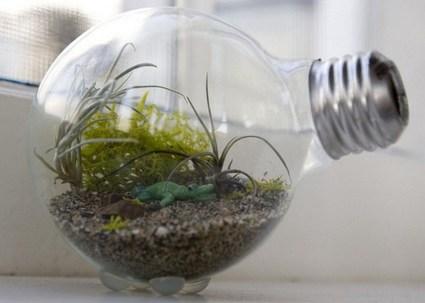 Simple ideas for adorable terrariums 30