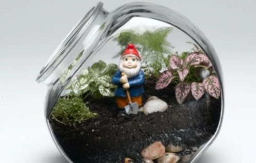 Simple ideas for adorable terrariums 42