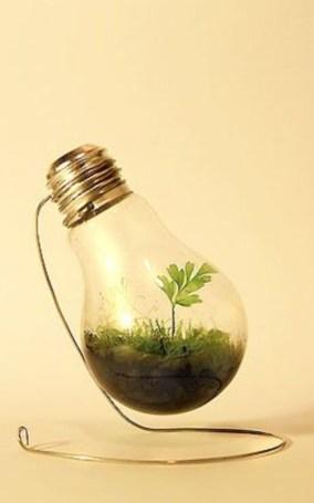 Simple ideas for adorable terrariums 51