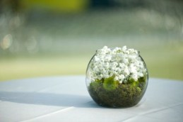 Simple ideas for adorable terrariums 52