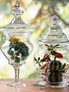 Simple ideas for adorable terrariums 55