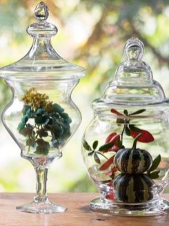 Simple ideas for adorable terrariums 55