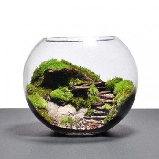 Creative diy fairy garden ideas to try 15