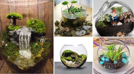 Creative diy fairy garden ideas to try 20