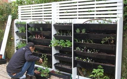 Inspiring vertical garden ideas for your small space 25