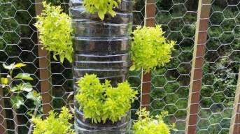 Inspiring vertical garden ideas for your small space 27