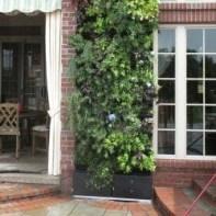 Inspiring vertical garden ideas for your small space 30