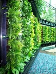 Inspiring vertical garden ideas for your small space 45