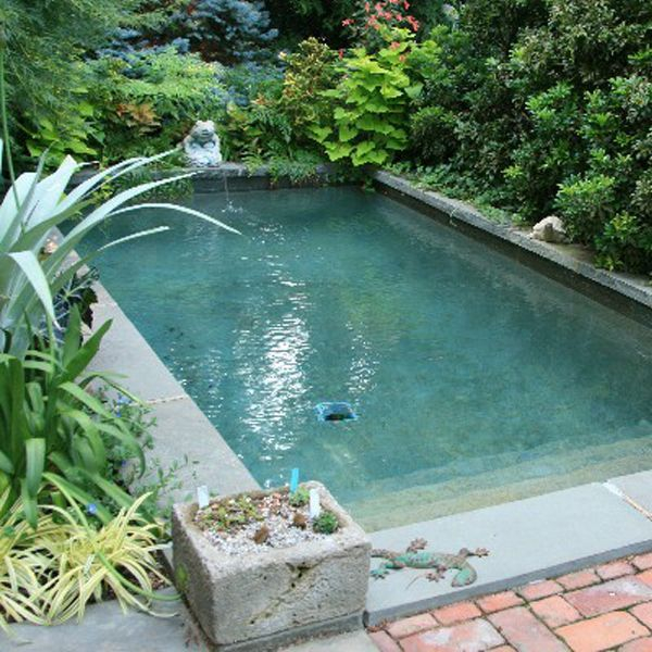 Refreshing plunge pool design ideas fo you to consider 35