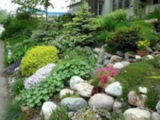 Simple rock garden decor ideas for your backyard 05