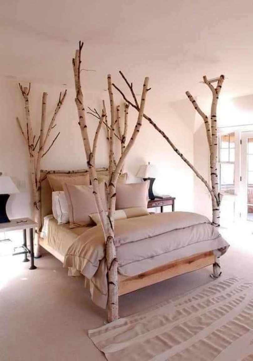 Modern Look With Tree Bed