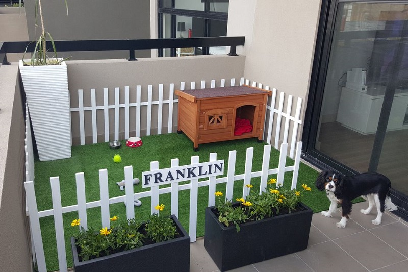 Pet-Friendly Balcony Decor