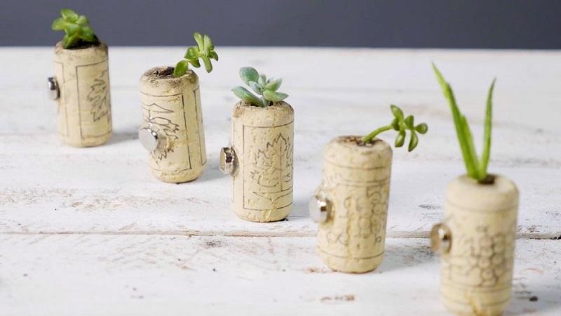 Tiny Cork Planters