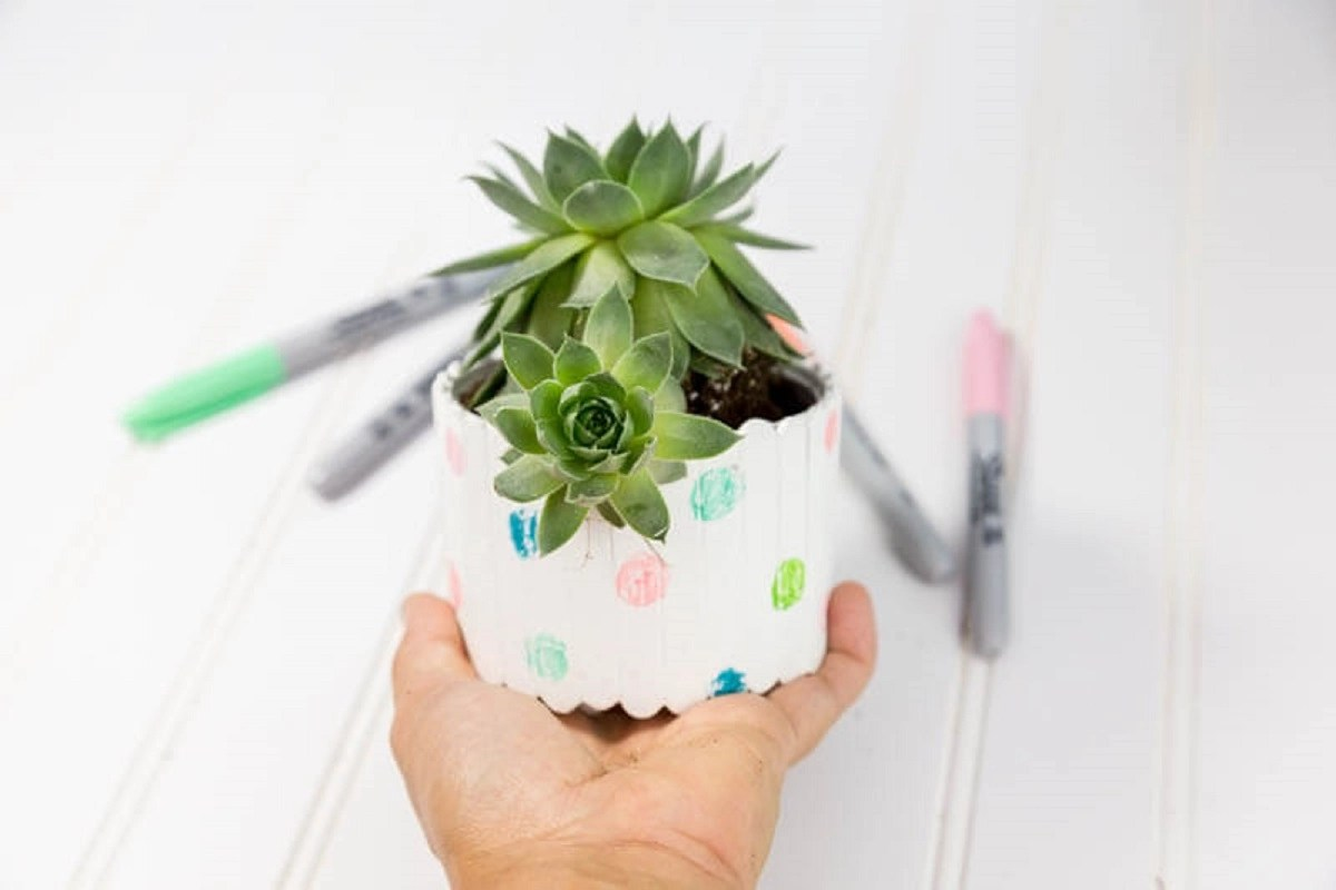 6 Best DIY Ideas With Popsicle To Make Your Little Garden Look More Enchanting