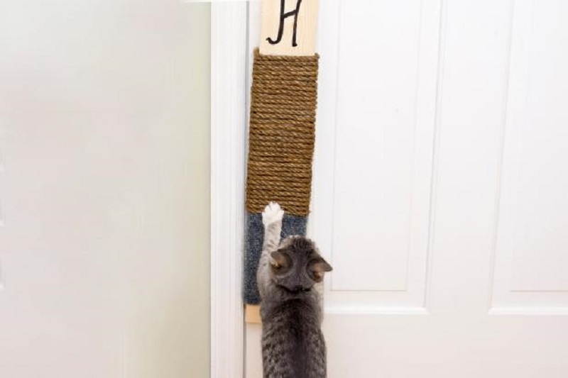 Super easy diy hanging scratching pad for your lovely cat
