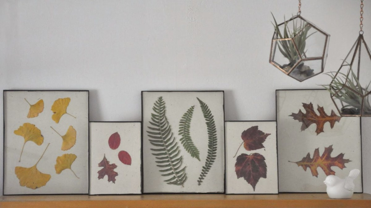 Press fall leaves wall art DIY Numerous Elegant Ways To Decorate With Leaf This Fall