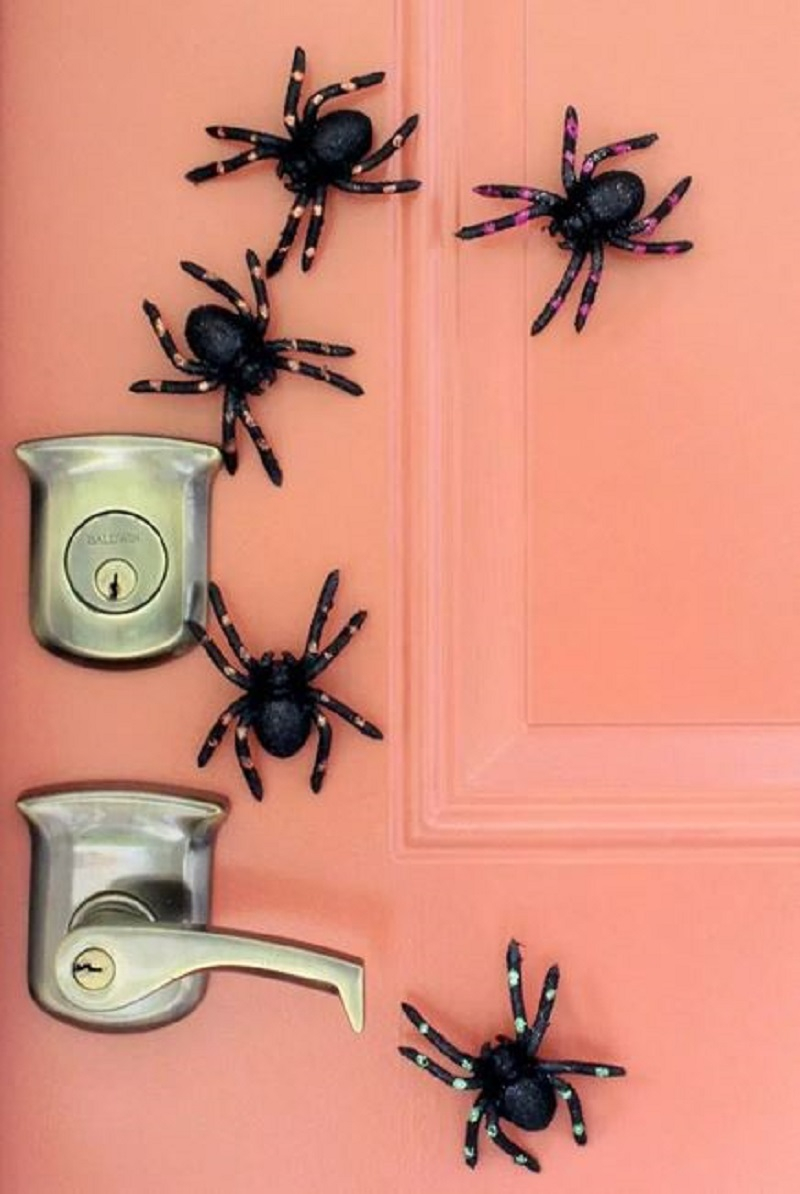 Diy magnetic spiders on the door