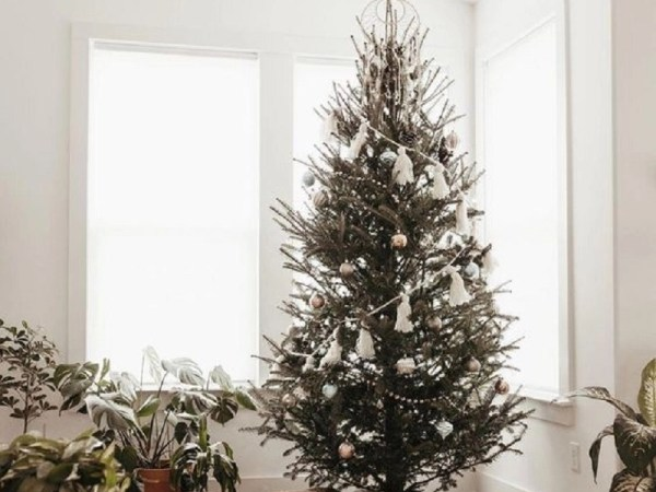 Diy boho christmas trees that stand out and chic for any home