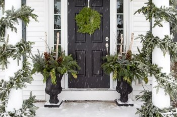 Evergreen for porch in winter