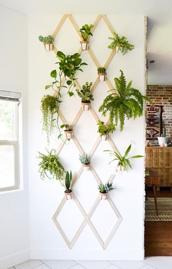 Indoor trellis Pleasant Indoor Garden Ideas To Cure The Winter Blues This Season
