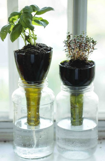 Self-watering glass planters Gardening Projects To Keep You Busy And Get You Through In The Colder Months This Year