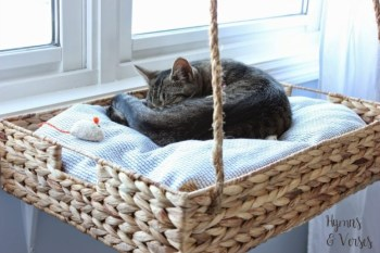 Cat bed of a wooden basket