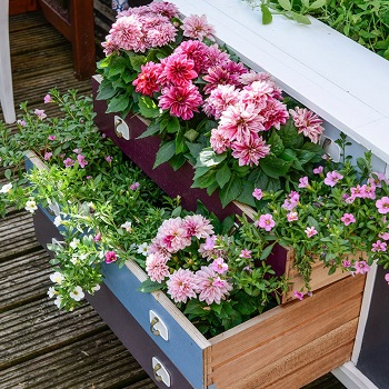 Upcycle a chest of drawers into a stunning planter Funny Weekend DIY Project To Keep You Out Off Boring