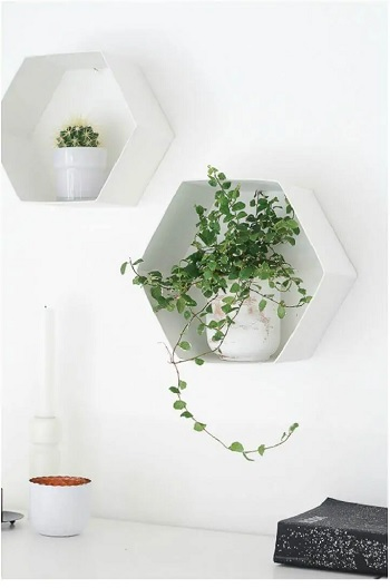 4 Best And Easy Hexagonal DIY Project That You Can Try Right Now