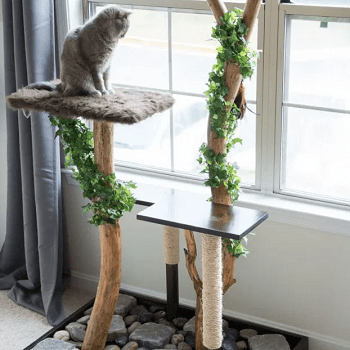 Cat tree house DIY Highly Striking And Safety Cat House Ideas