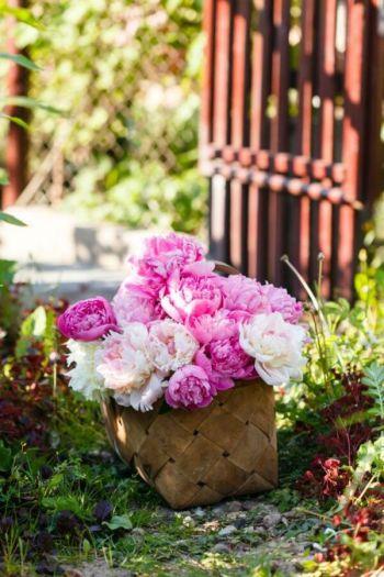 Fresh cut blooms in a basket