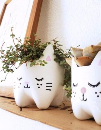 Diy kitty planters