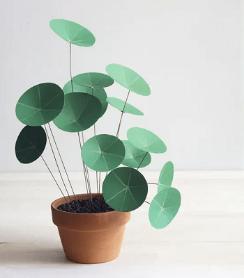 Paper chinese money plant DIY Fake Plants That Easy To Follow For Home Decoration