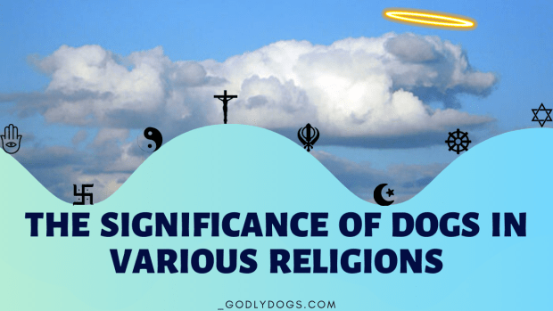 The significance of DOGS in various religions cover by godlydogs.com