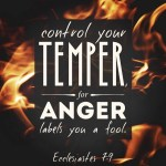 Ecclesiastes 7:9 Be not hasty in thy spirit to be angry: for anger resteth in the bosom of fools.