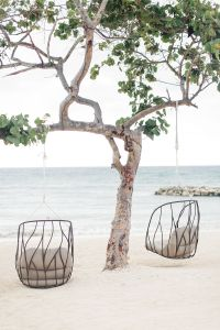 Fighting God's will. Tree with hanging chairs on the sand.