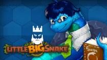 LittleBigSnake