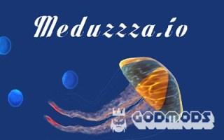 Meduzzza.io