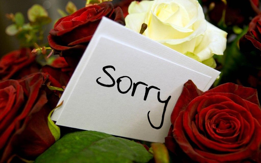 photos for sorry