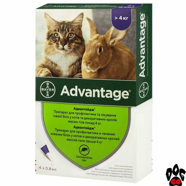 Адвантейдж для кошек более 4 кг от блох и клещей (№80), цена за 1 пипетку