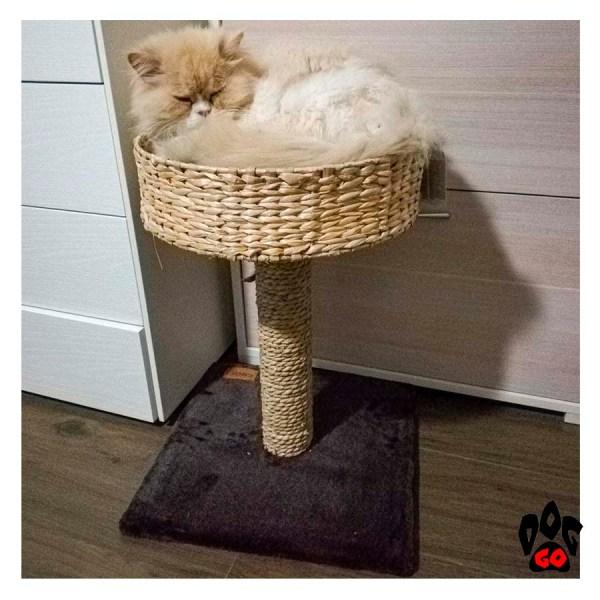 Когтеточка для кошек CROCI Lilium, 40x40x52 см-6