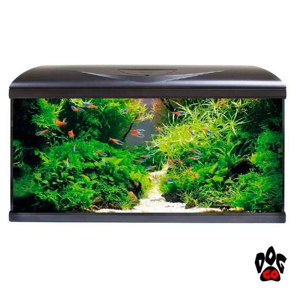 Аквариум AMTRA SYSTEM 80 LED BLACK 85 литров, 80x32x48см (фильтр, помпа 520л/ч, нагр-ль 100Вт, LED 3 цвета)