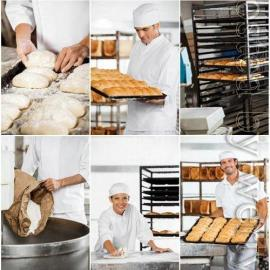 People working in a bakery stock photo Free Download