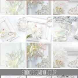 Colored pearl brilliance bundle 1794057 Free Download