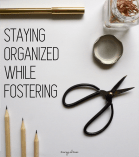 Foster Care - How To Put Together A Foster Care Organization Binder 2b