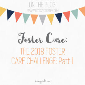 Foster Care - 2018 Foster Care Challenge - Part 1